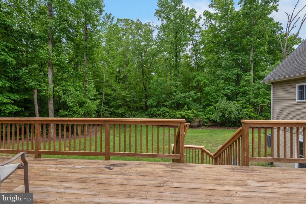 Backyard view of tree line - 2843 GARRISONVILLE RD, STAFFORD