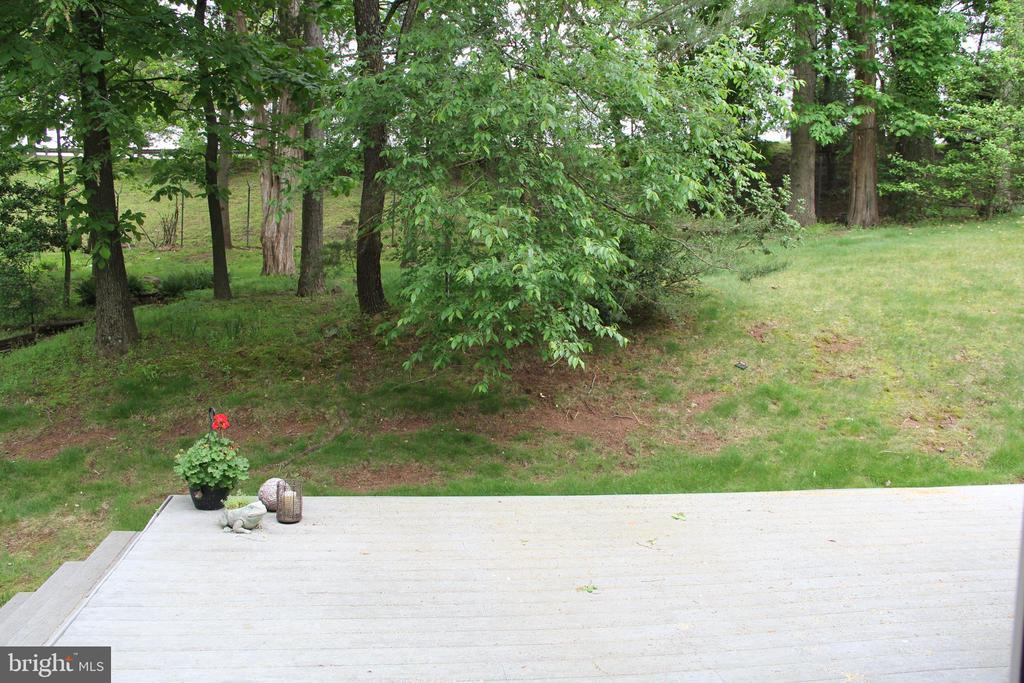 Wooded back and decking for entertaining - 11911 CRAYTON CT, HERNDON