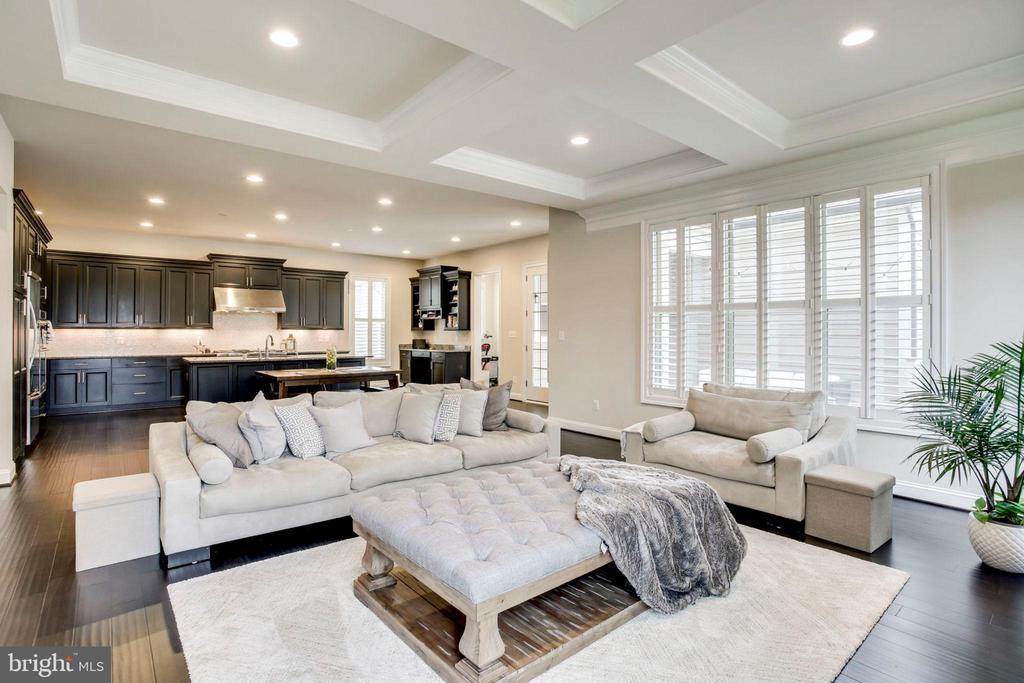 Family Room off Kitchen  w/coffered ceiling - 20650 HOLYOKE DR, ASHBURN