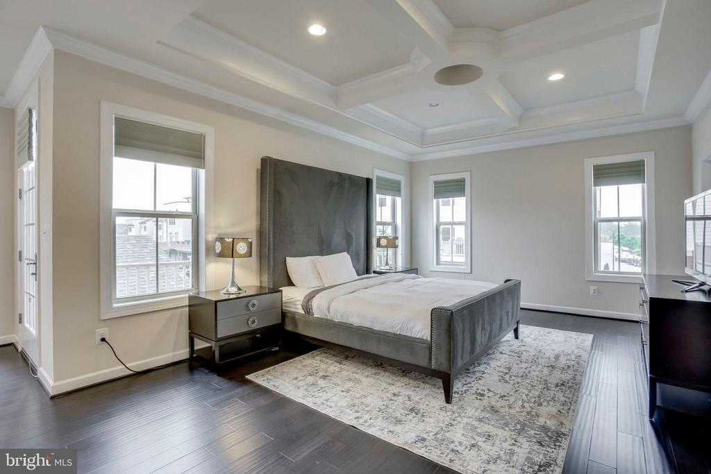 Master Bedroom  w/two walk-in closets - 20650 HOLYOKE DR, ASHBURN