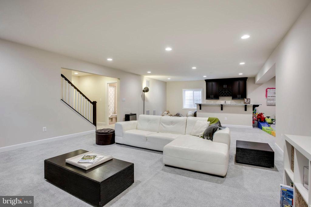 Large Basement - 20650 HOLYOKE DR, ASHBURN