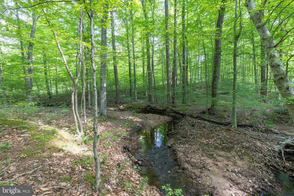 On property creek forms a natural boundary - 32 MONUMENT DR, STAFFORD