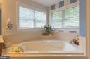 Luxurious bathtub surrounding by natural light - 32 MONUMENT DR, STAFFORD