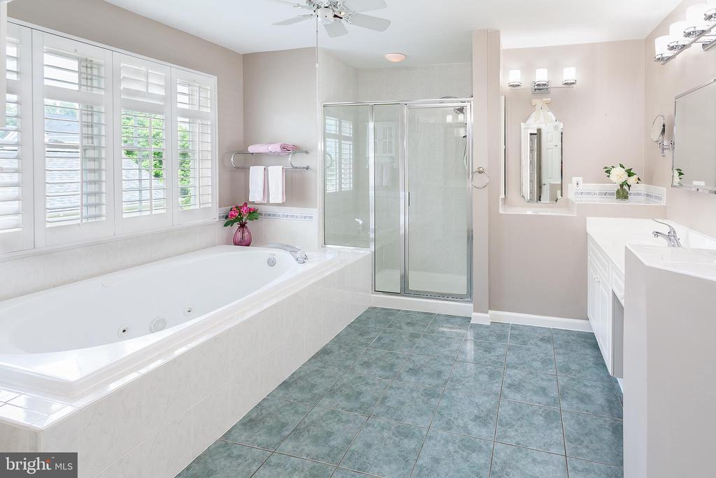 Master Bathroom - 894 STATION ST, HERNDON