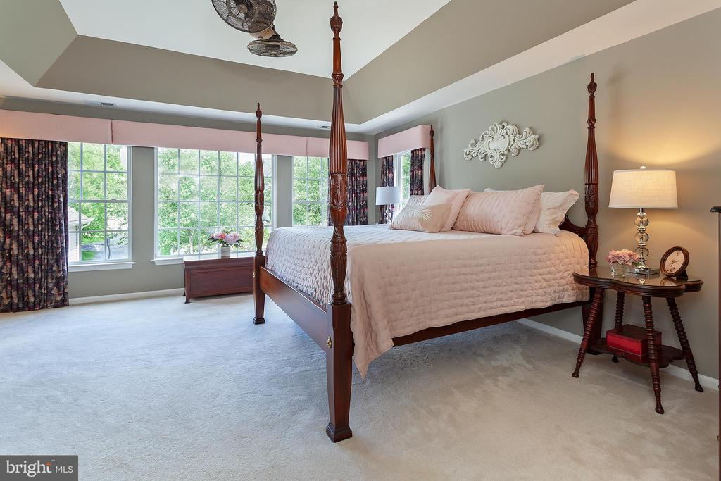 Master bedroom - 894 STATION ST, HERNDON