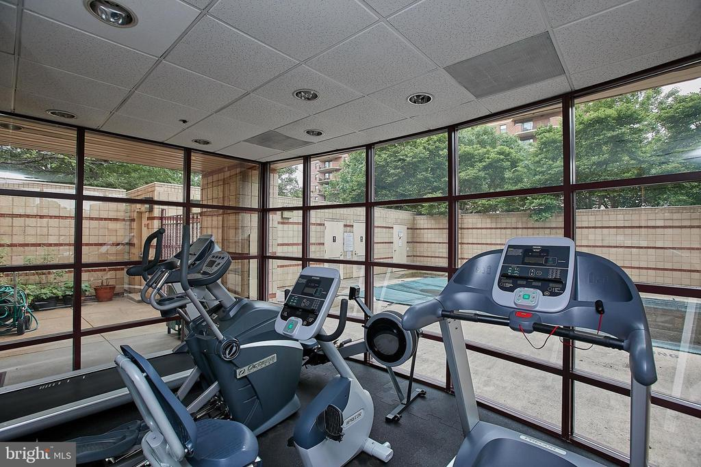 Gym overlooks the building's outdoor pool - 2400 CLARENDON BLVD #203, ARLINGTON