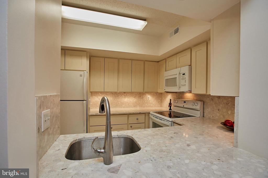 Beautiful Stone Counters w/ Undermount Sink - 2400 CLARENDON BLVD #203, ARLINGTON