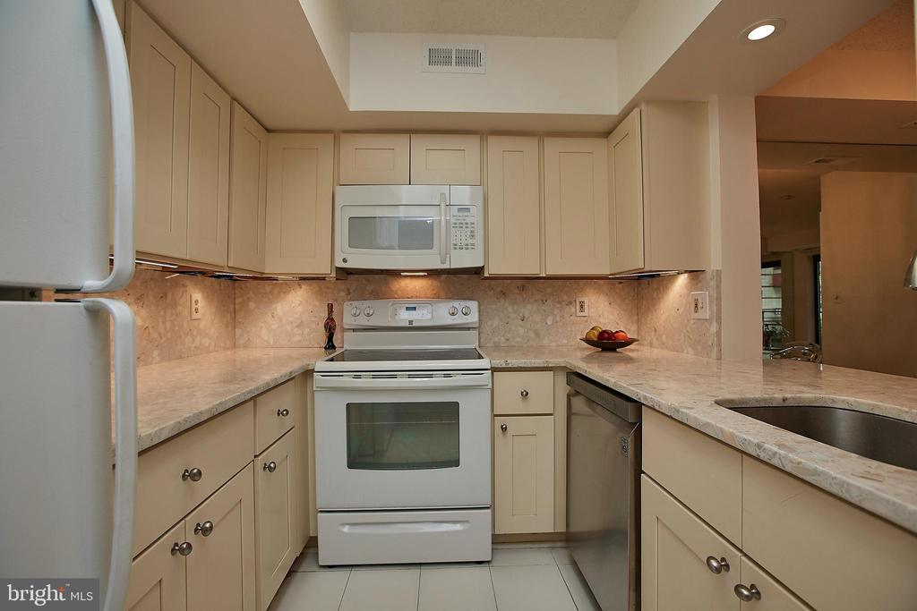 Beautiful bright kitchen - 2400 CLARENDON BLVD #203, ARLINGTON