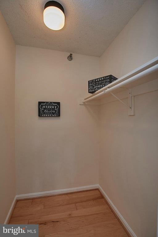 XL Walk in Closet! ~ Storage out of sight too! - 2400 CLARENDON BLVD #203, ARLINGTON