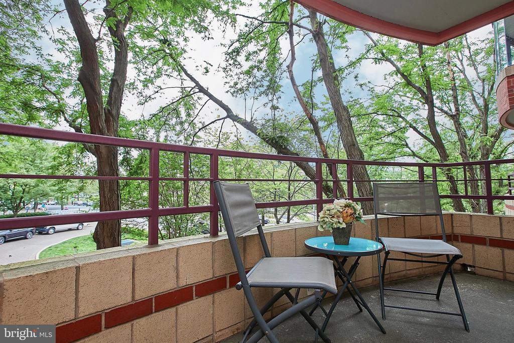 Perfect Private outdoor patio space! - 2400 CLARENDON BLVD #203, ARLINGTON