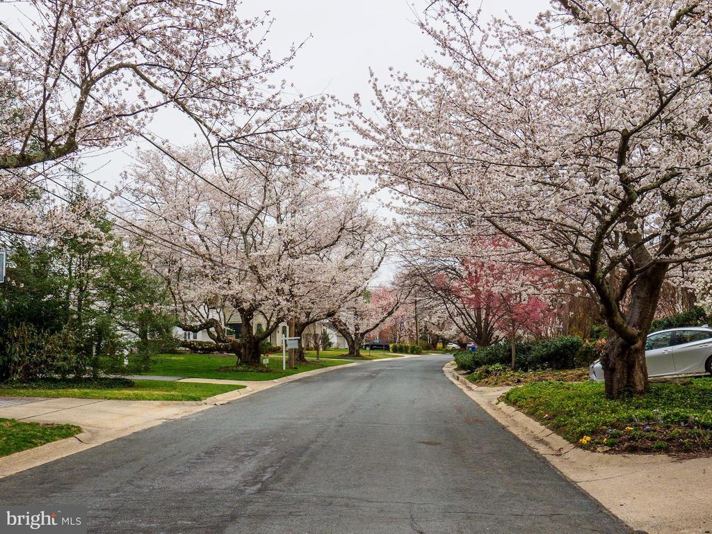 Neighborhood offers walking path to Bethesda - 5508 DEVON RD, BETHESDA