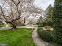 All on a mature cherry tree lined street - 5508 DEVON RD, BETHESDA