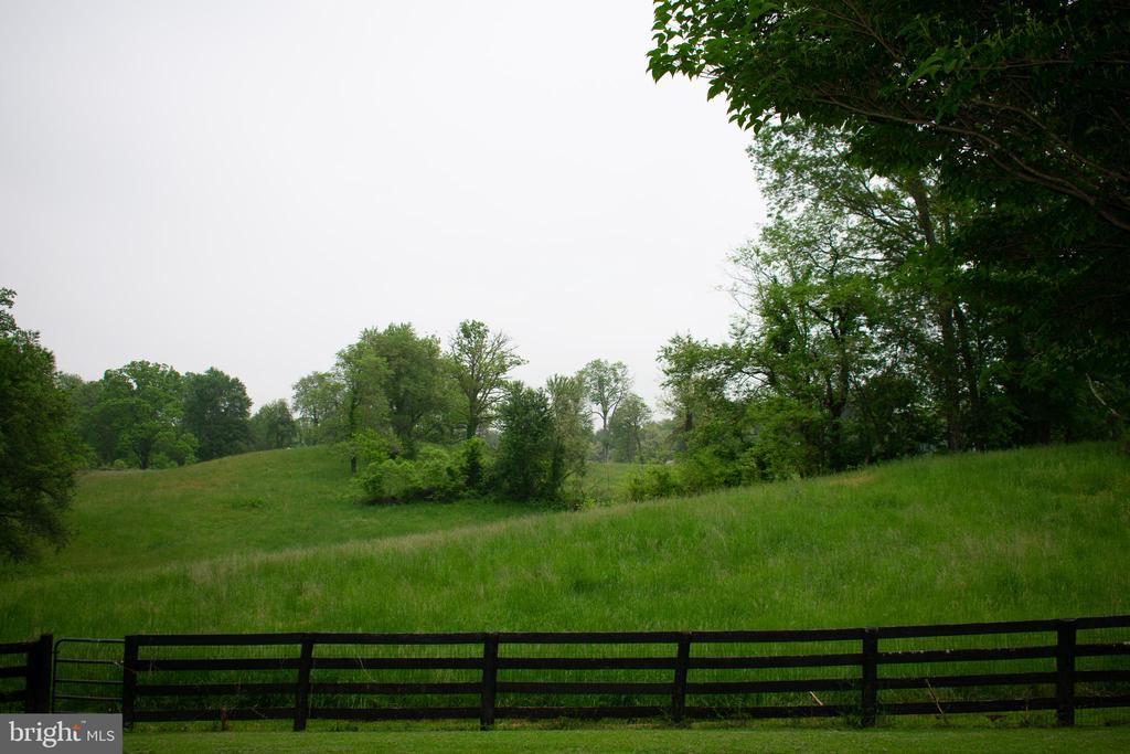view of large front field - 37354 JOHN MOSBY HWY, MIDDLEBURG