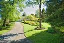 Lovely mature landscaping - 23009 COBB HOUSE RD, MIDDLEBURG