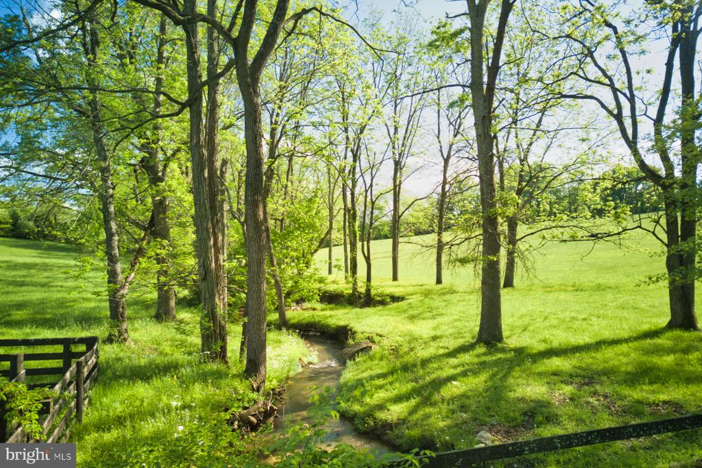 Charming meandering creek - 23009 COBB HOUSE RD, MIDDLEBURG