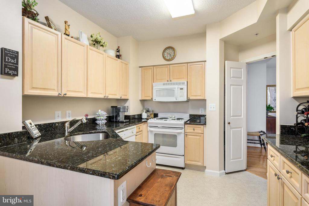 LOTS of counter space - 19355 CYPRESS RIDGE TER #416, LEESBURG