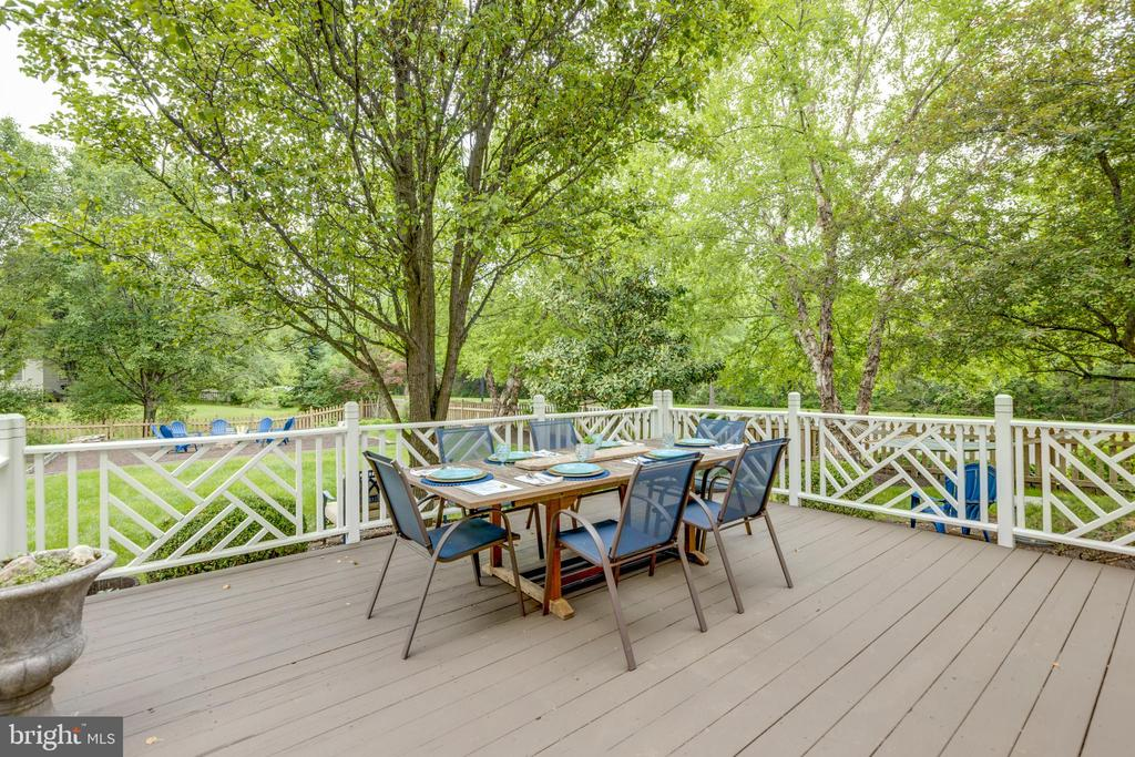 Huge outdoor deck perfect for entertaining - 43262 TISBURY CT, CHANTILLY