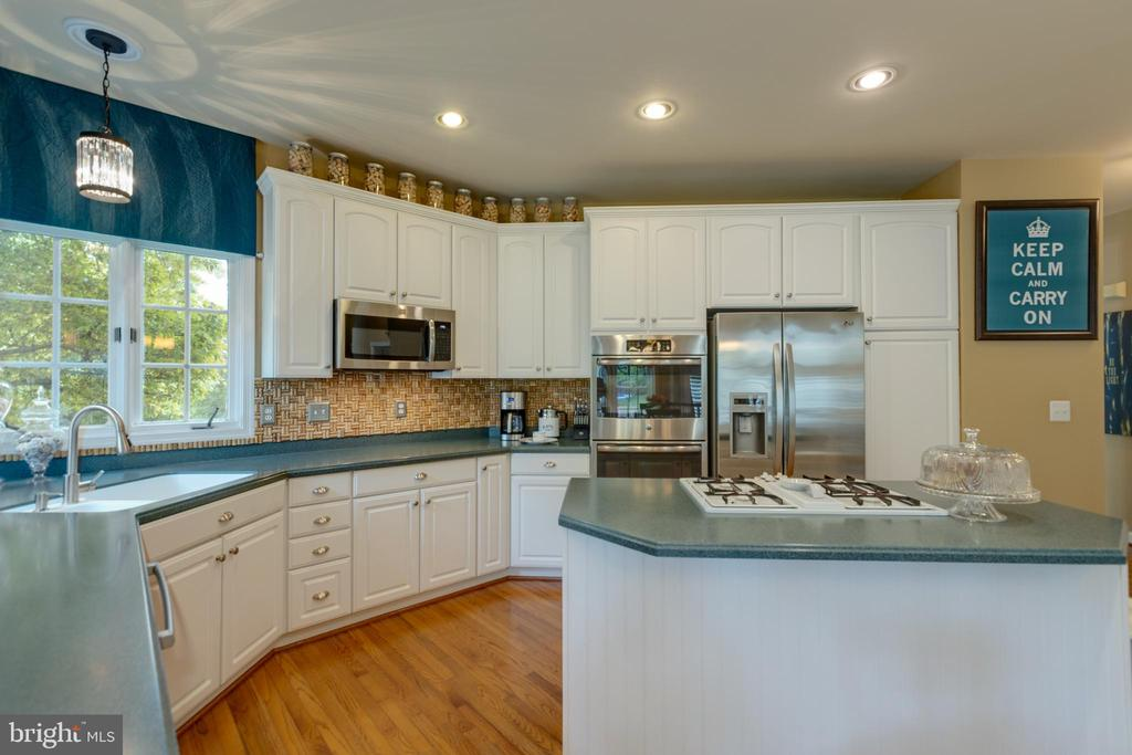 Stainless steel appliances - 43262 TISBURY CT, CHANTILLY