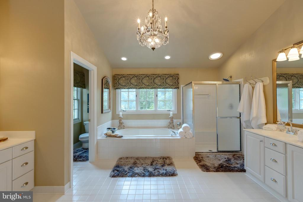 Gorgeous master bath with soaking tub - 43262 TISBURY CT, CHANTILLY