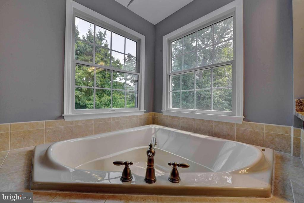 Master  bathroom soaking tub - 20305 MEDALIST DR, ASHBURN