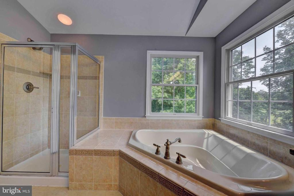 Master Bathroom suite - 20305 MEDALIST DR, ASHBURN
