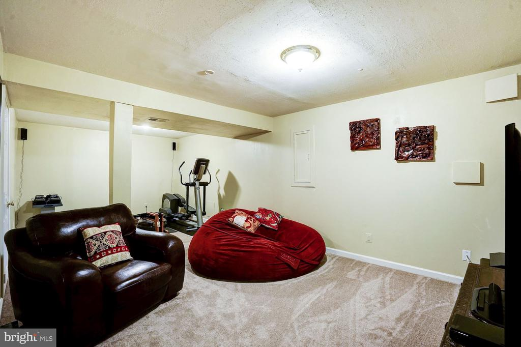 Lower Level Rec Room- Carpet - 2330 CLUB POND LN, RESTON