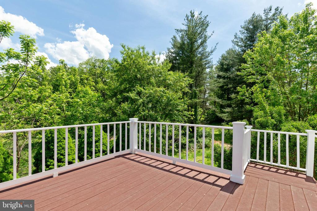 Deck with beautiful views - 23210 DOVER RD, MIDDLEBURG