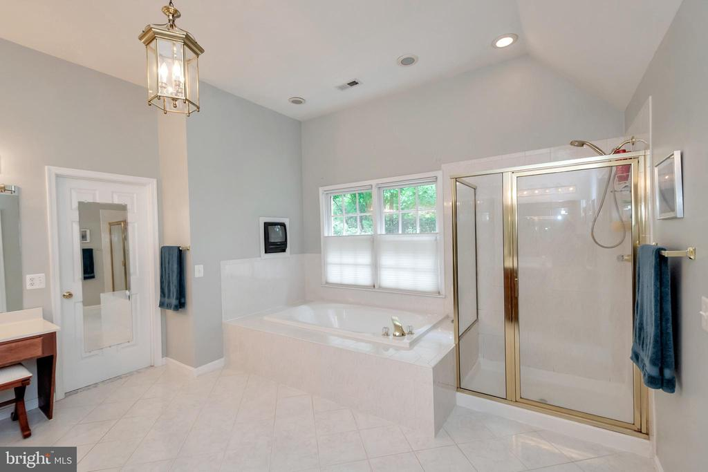 relaxing tub and large shower - 11325 FAWN LAKE PKWY, SPOTSYLVANIA