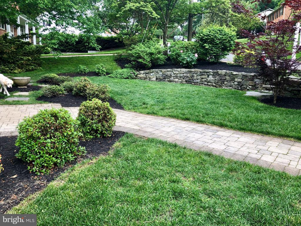 Front Landscaping - 6203 FOXCROFT RD, ALEXANDRIA