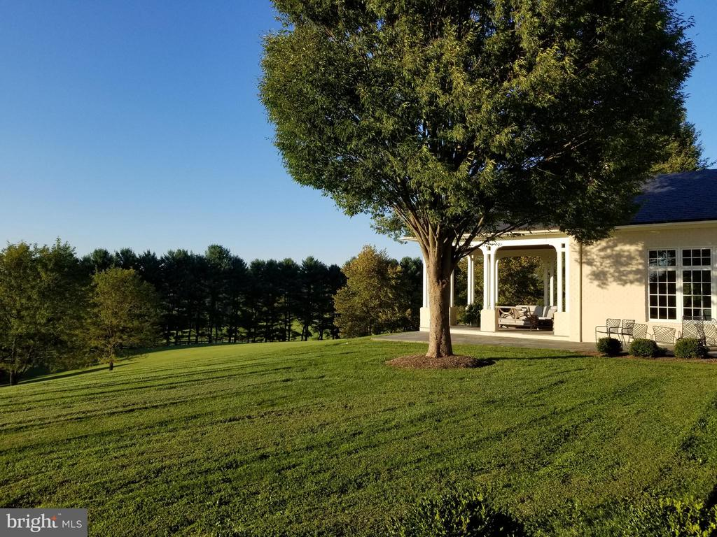 View from MBR Suite to terrace with fireplace - 2200 GADD RD, COCKEYSVILLE