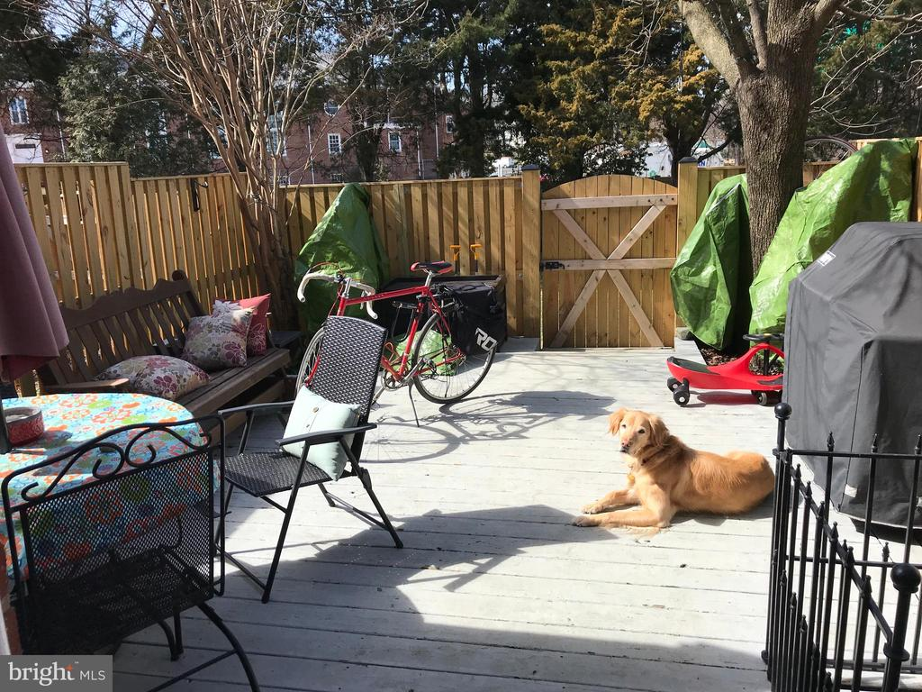 Party time for all; bike racks, dog friend, family - 4668 36TH ST S #B, ARLINGTON