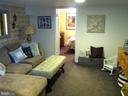 Lower level family room with cozy plush carpet - 4668 36TH ST S #B, ARLINGTON