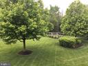 Gorgeous backyard with all the trees out - 42760 RIDGEWAY DR, BROADLANDS