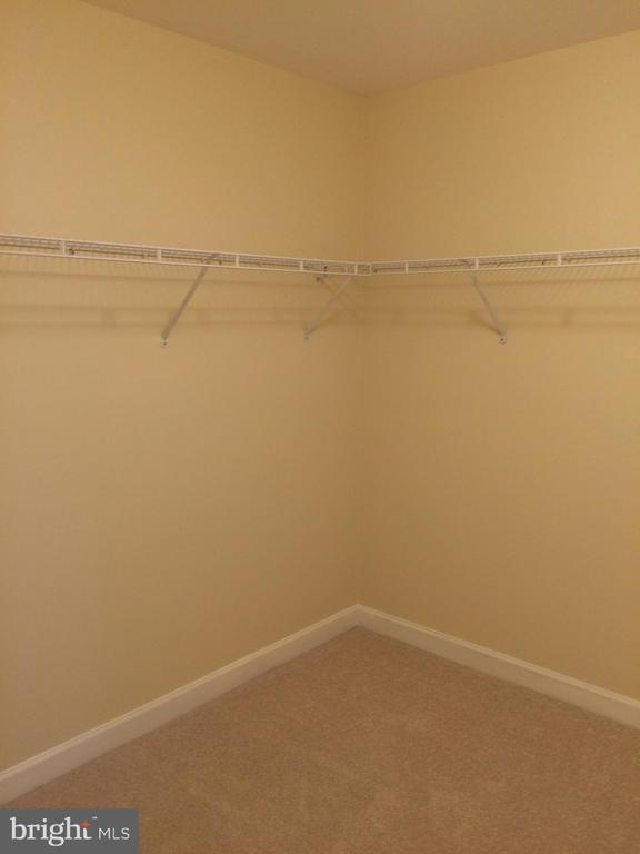 Master bath walk-in closet number 2 - 12302 HUNGERFORD MANOR CT, MONROVIA