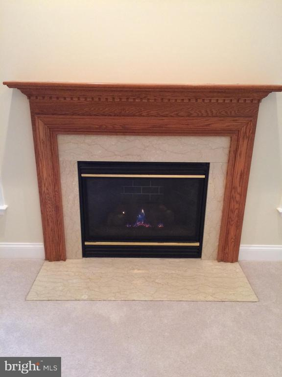Gas fireplace controlled by wall switch - 12302 HUNGERFORD MANOR CT, MONROVIA