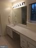 Master bath vanity - 12302 HUNGERFORD MANOR CT, MONROVIA