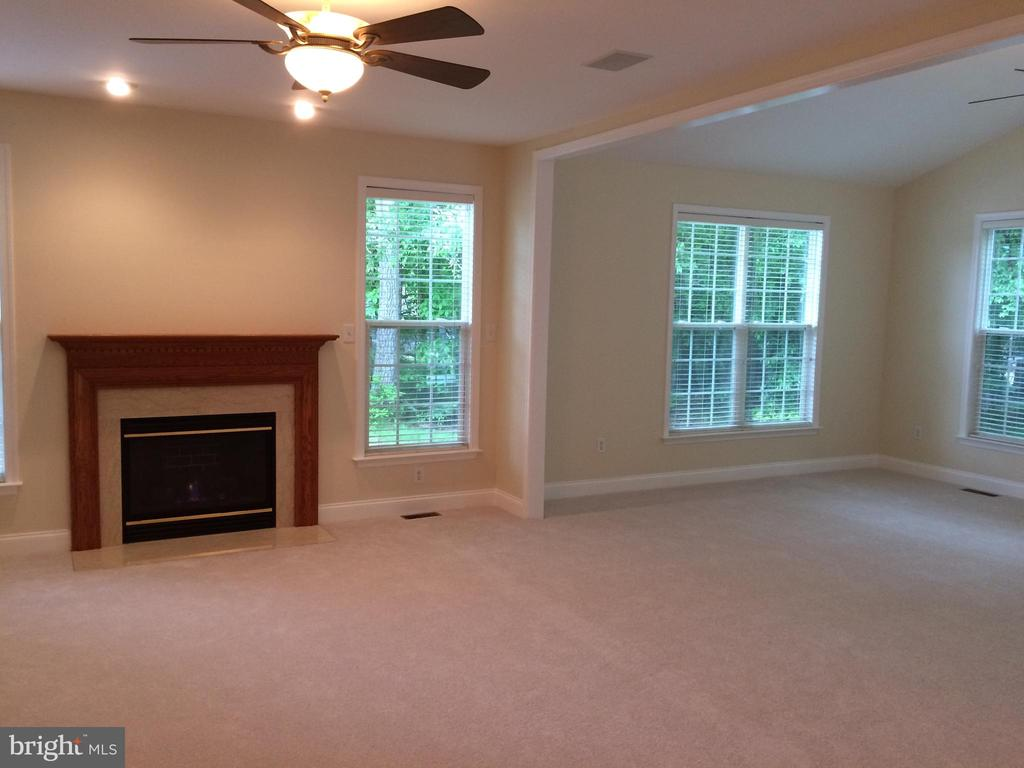 Family room with fireplace - 12302 HUNGERFORD MANOR CT, MONROVIA