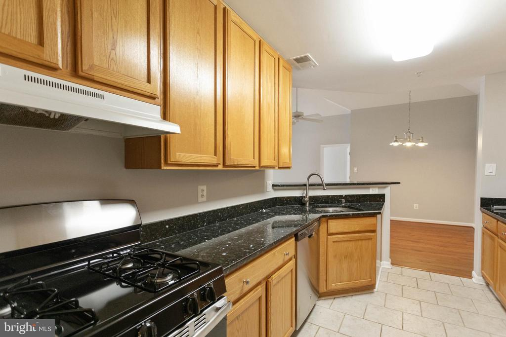NEW DISHWASHER AND STOVE - 10732 SYMPHONY WAY #202, COLUMBIA