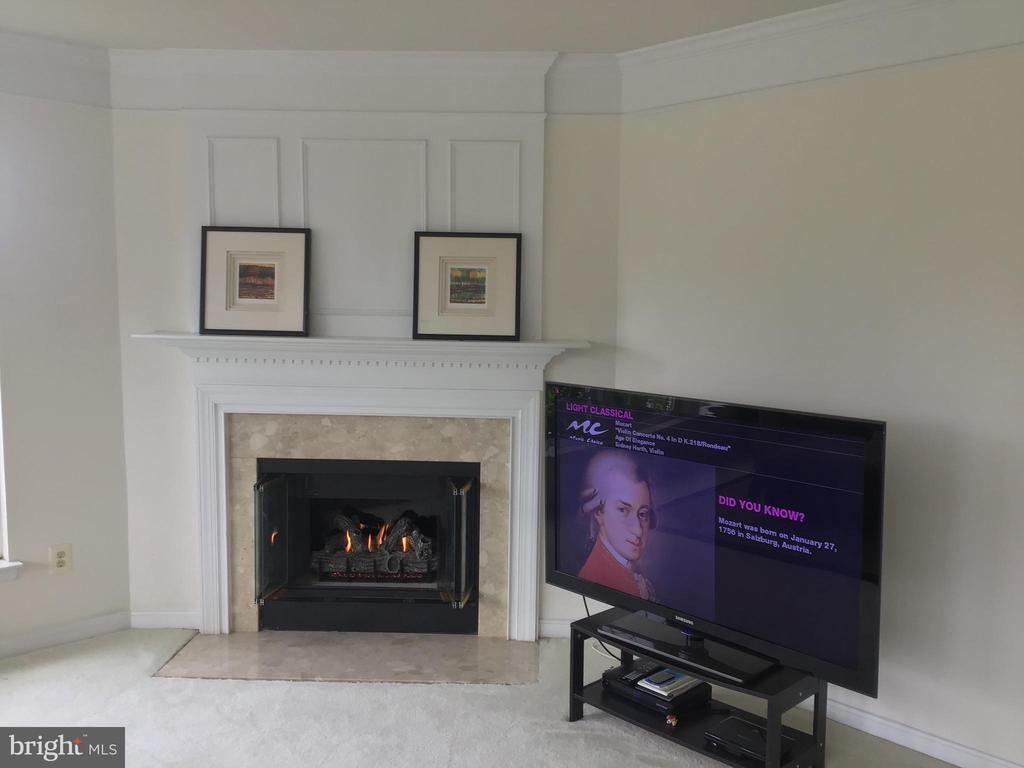 Cozy Gas Fireplace, With Marble Surround - 12789 FAIR CREST CT #16-302, FAIRFAX