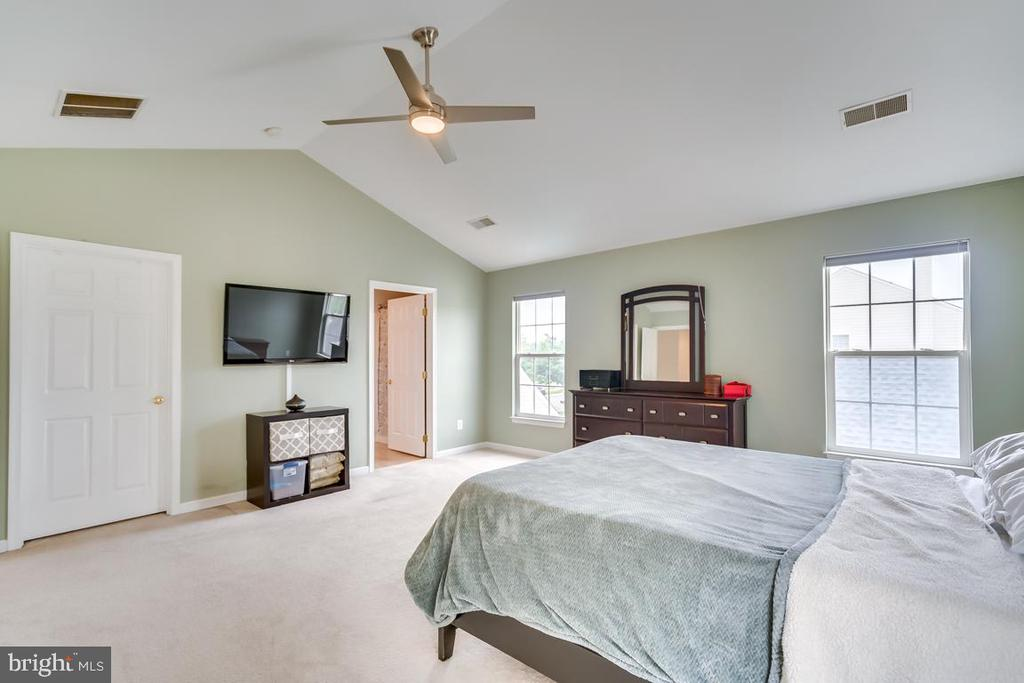 Master Vaulted Ceilings - 42773 CENTER ST, CHANTILLY