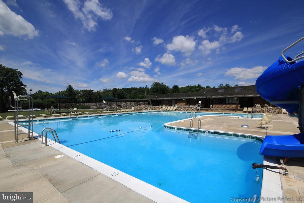 Community Pool - 10224 NUTHATCH DR, NEW MARKET