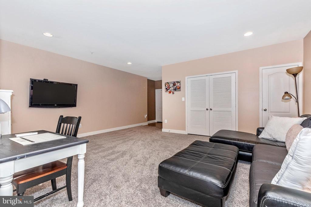 Lower Level Game Room - 10224 NUTHATCH DR, NEW MARKET