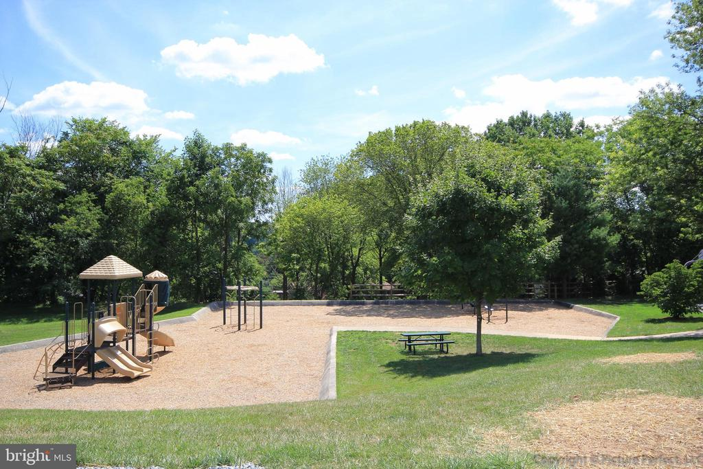 Community Play Ground - 10224 NUTHATCH DR, NEW MARKET