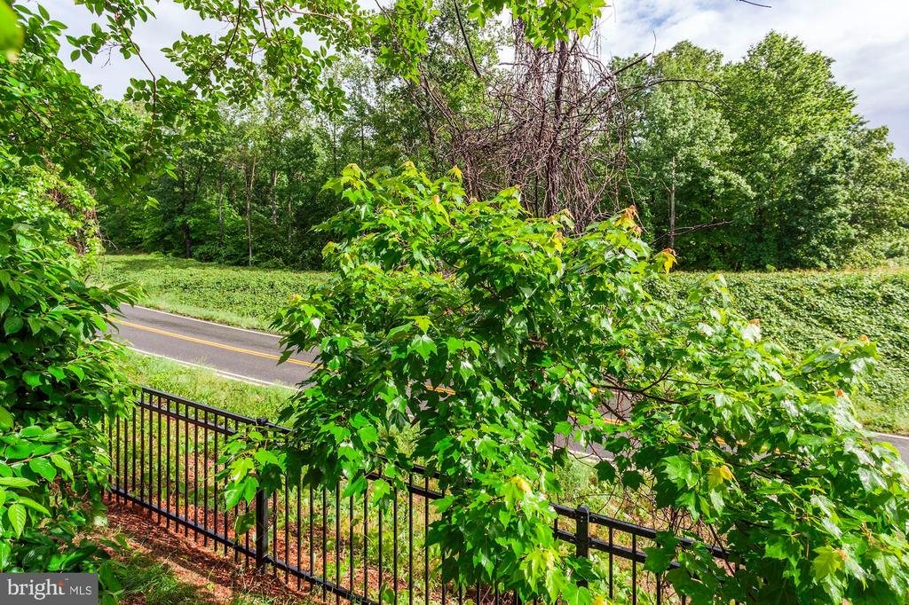Beautiful view! - 275 LONG POINT DR, FREDERICKSBURG
