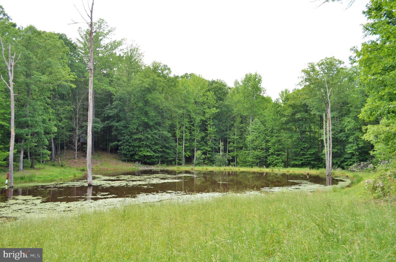 أراضي للـ Sale في Gordonsville, Virginia 22942 United States