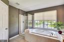 Master bath has soaking tub & private water closet - 732 HUNTON PL NE, LEESBURG