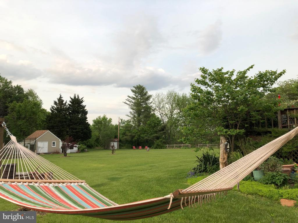 Relax in your hammock. Listen to the birds. - 15020 ROLLING RIDGE RD, HAYMARKET