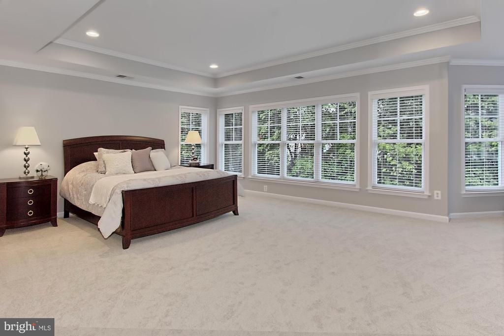 Pamper Yourself in this Magnificent Owners Suite - 42690 EXPLORER DR, BRAMBLETON