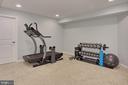 Wonderful Gym w/ Rec Lighting and Walk-In Closet - 42690 EXPLORER DR, BRAMBLETON