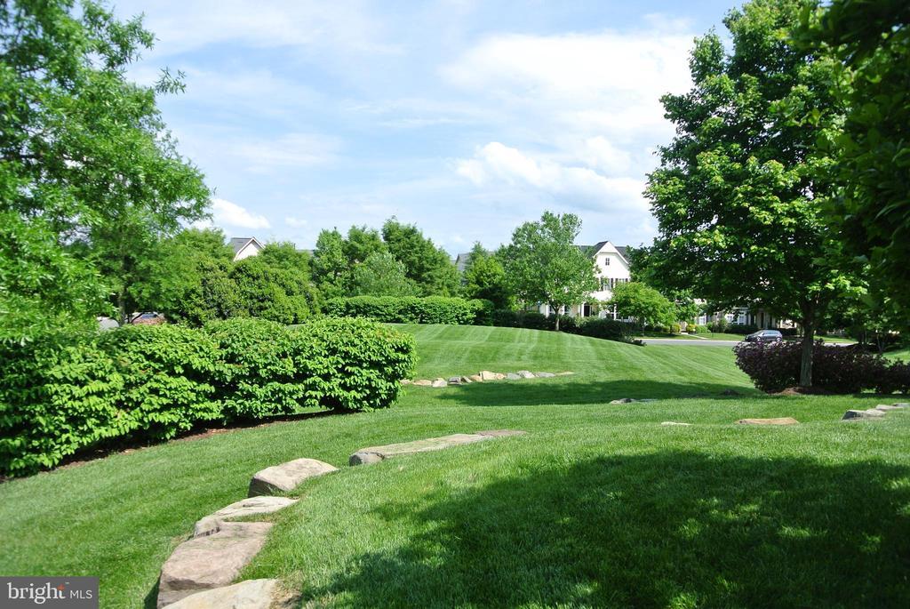Enjoy the Grassy Park and All of it's Glory - 42690 EXPLORER DR, BRAMBLETON